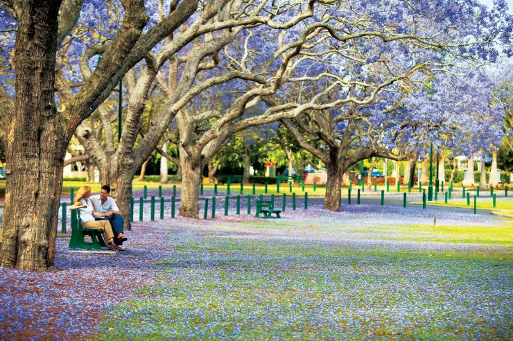 New Farm Park, Brisbane, Queensland © Tourism and Events Queensland